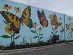 Butterfly Mural on the wall of Portlock Galleries in South Norfolk - photograph
