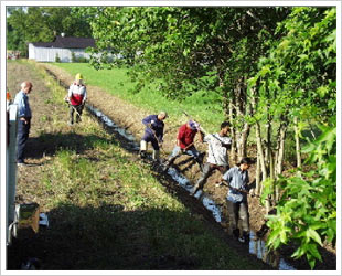 drainage ditch cleaning - photograph