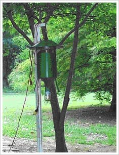 MOSQUITO LIGHT TRAPS (New Jersey light traps) photograph