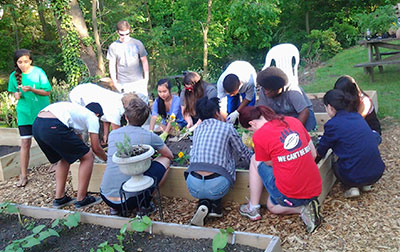 Youth Planting Flowers