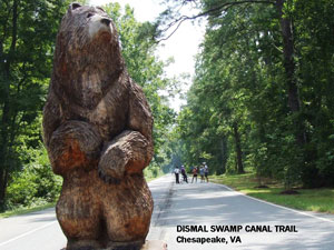photo of bear statue at the beginning of the Dismal Swamp Canal Trail