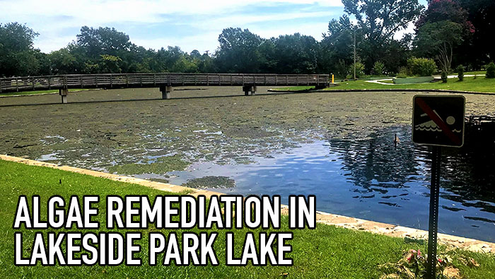 Algae Remediation Lakeside Header