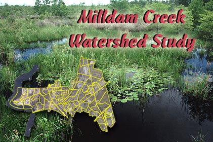 Milldam Creek Watershed Study