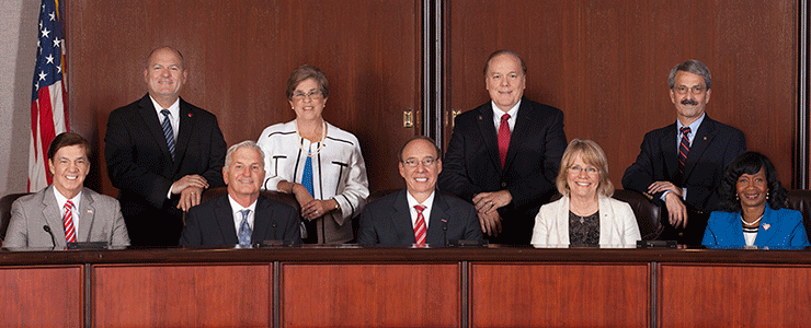 Chesapeake City Council 2014