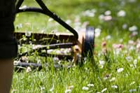 close-up of manual lawnmower - photograph