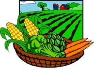 bowl of vegetables - graphic